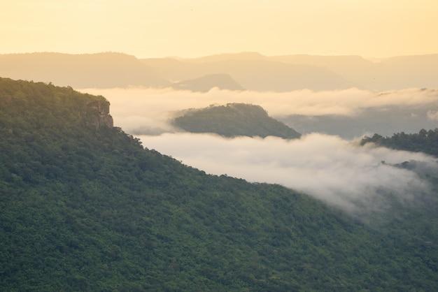 Mist dekking bergen