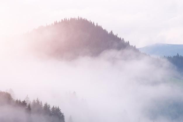 Mist in berg