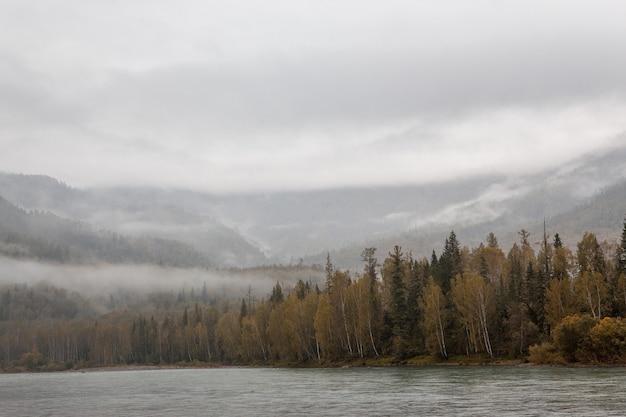 Mist in de bergen. bewolkt bos. rivier.