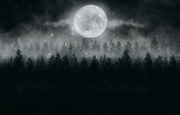 Mistig donker bos. mist, smog. wilde bosaard, boslandschap. donker bos, nachtzicht