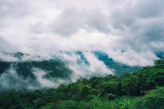 Mistig in de bergen met dramatische hemel bij dag in thailand.