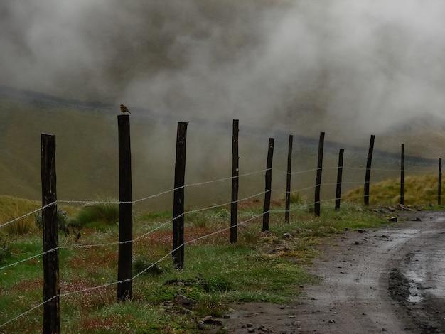 Mistig landschap met houten hek