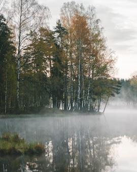 Mistig meer in een berkenbos in de herfst