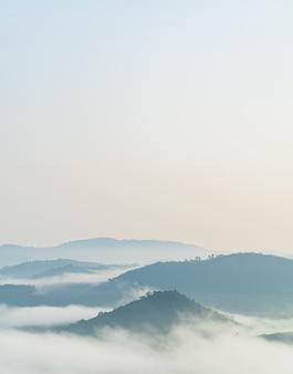 Mistig over bosheuvelverticaal met zachte zonsopgang in de ochtend