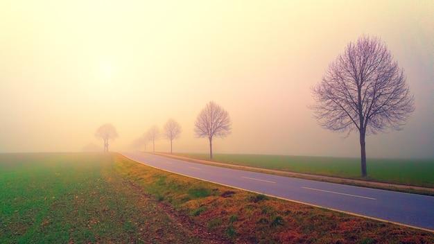Mistige eenzame weg