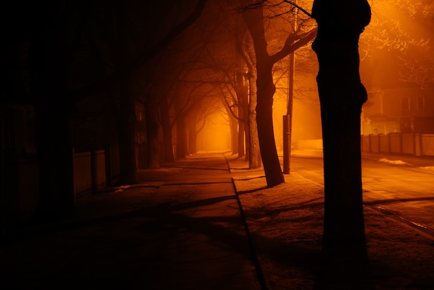 Mistige herfstnacht