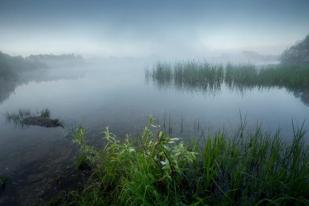 Mistige ochtend aan het meer
