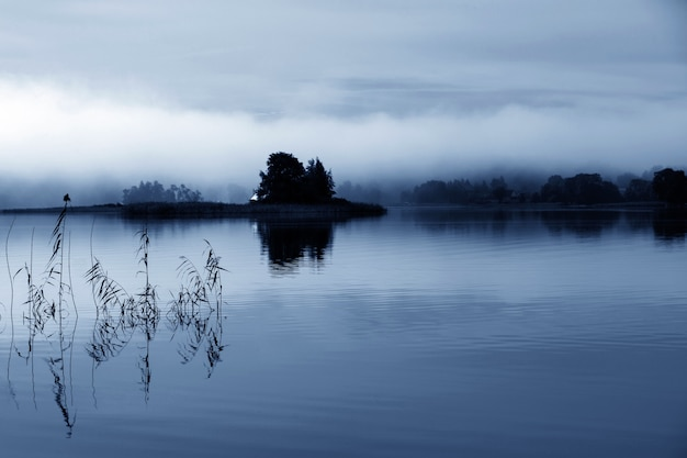 Mistige ochtend in blauw 2020. een eiland in het midden van een rivier in de mist. reflectie in water. vrede en stilte.