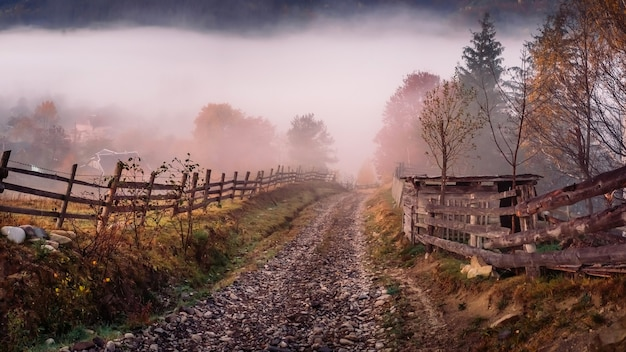Mistige ochtend in de bergen in de herfst, natuurversheid en gele bomen