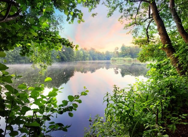 Mistige ochtend met zonsopgang op het meer