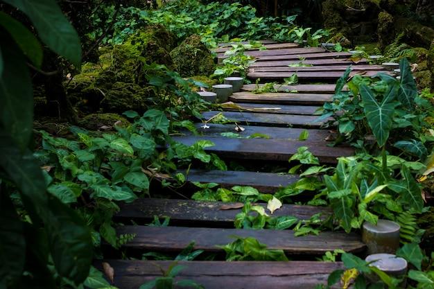Mistige ochtend op de stoom met houten brug,