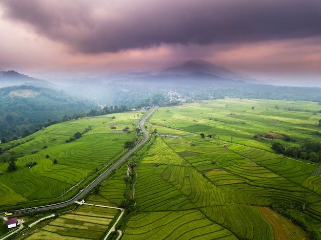 Mistige ochtend op rijstvelden met berg in noord-bengkulu, indonesië