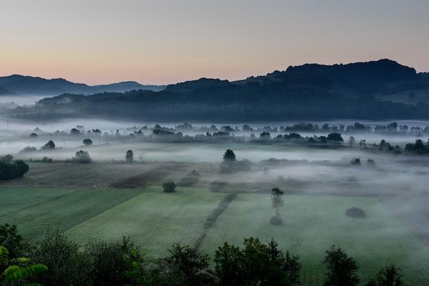 Mistige ochtend over landelijk platteland landsacpe. landbouw perceel.