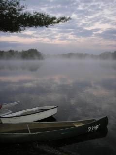 Mistige ochtend-, water-