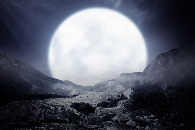 Mistige rotsachtige berg