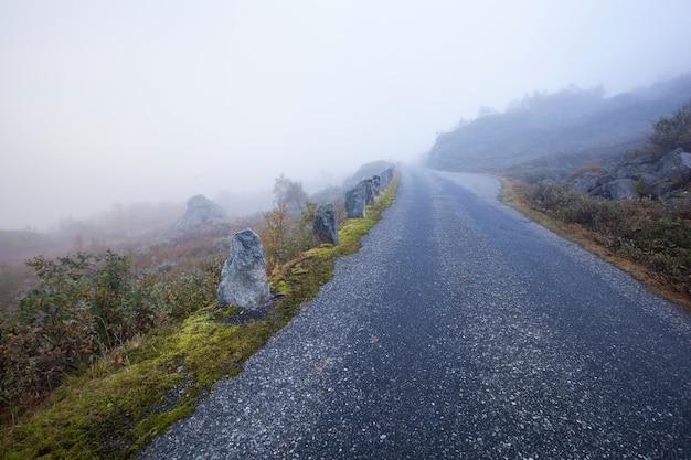 Mistige weg in noorwegen gamle strynefjellsvegen