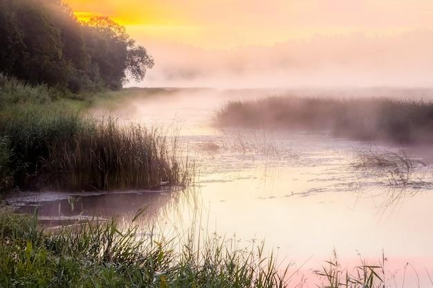 Mistige zonsopgang boven de rivier, gouden uurhemel.