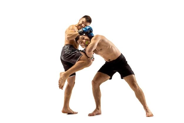 Mma twee professionele vechters ponsen of boksen geïsoleerd op een witte studio achtergrond