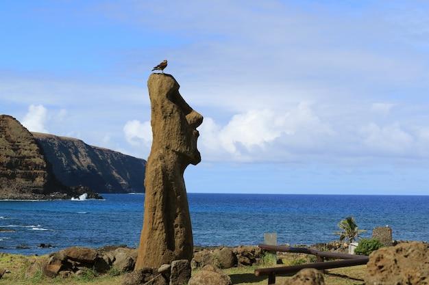 Moai-standbeeld in ahu tongariki met condorvogel op het hoofd, pasen-eiland, chili
