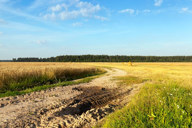 Modder en plassen op een weg door een landbouwgebied