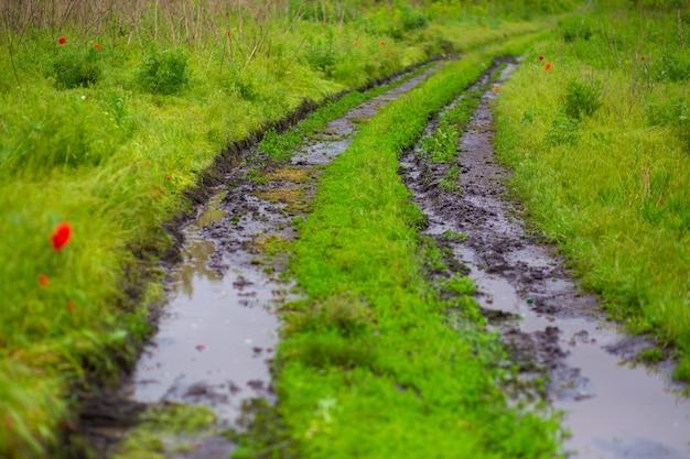Modderbaan van een auto onder een groen veld na regen.