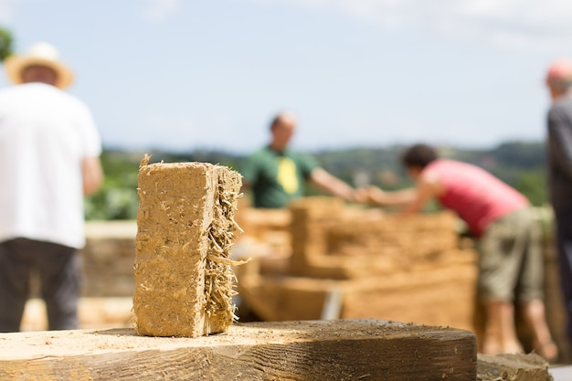Modderbaksteen in bio-constructie en werknemers onscherp