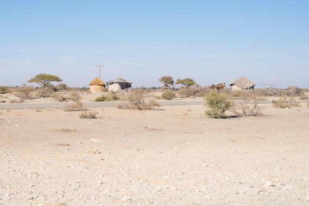 Modderstro en houten hut met rieten dak in de struik. namibië, afrika.