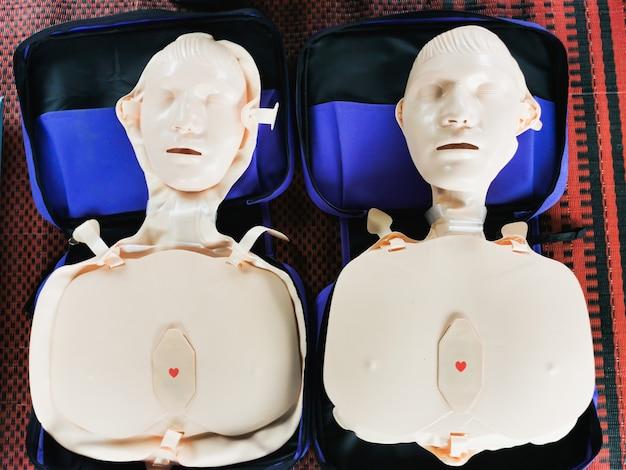 Model van menselijk rubber om te demonstreren hoe je een hartpomp maakt