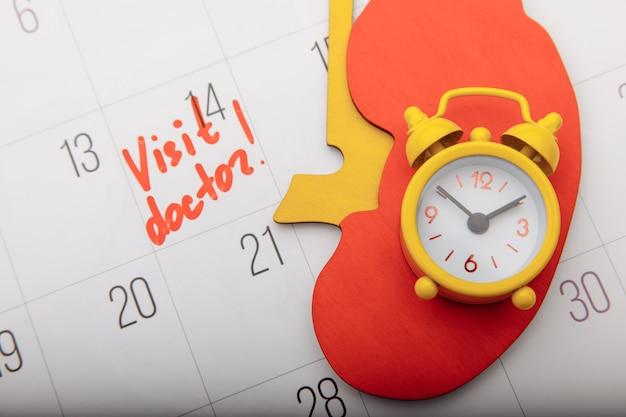 Model van nier met gele wekker op kalender met teken vroeg diagnostisch concept