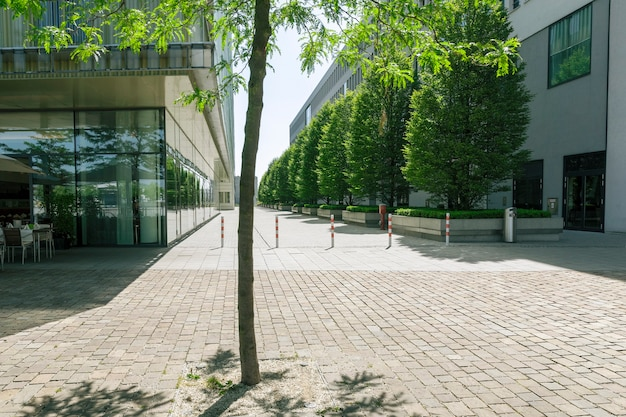 Modern stadsplein op zonnige dag tussen kantoorgebouwen met groene boom op de voorgrond