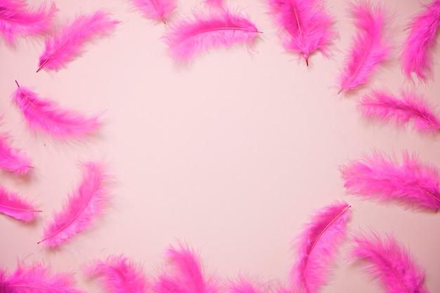 Moderne roze achtergrond met veren en copyspace