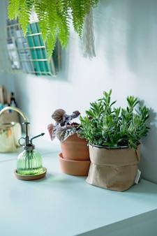 Moderne scanidinavische interieurdetails zoals kantooraccessoires, planten en andere decoratie
