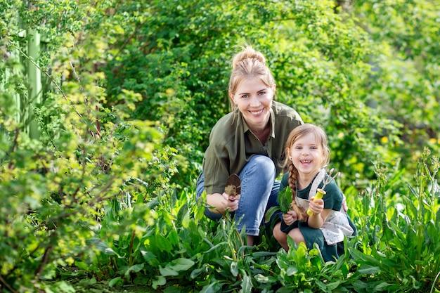Moeder en dochter in de tuin oogst. een jonge blonde vrouw en een klein meisje met licht haar.