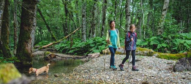 Moeder en dochter met een hond die in het bos wandelt