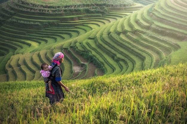 Moeder en kind hmong, werkend aan rijstterrassen, mu cang chai, vietnam