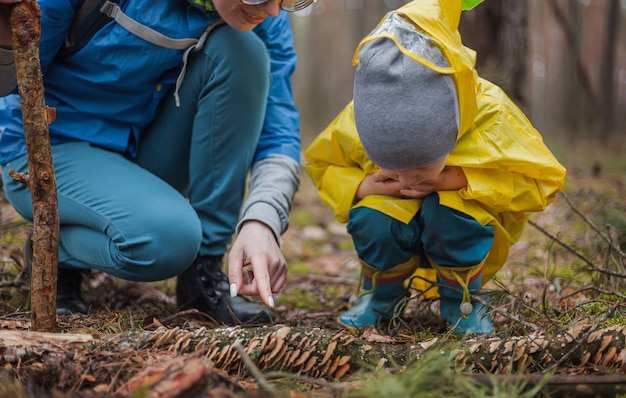 Moeder en kind wandelen samen in het bos na de regen in regenjassen, kijken naar paddenstoelen op een omgevallen boom en praten