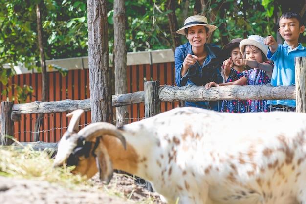Moeder en kinderen die geit kijken die gras in landbouwbedrijf eten