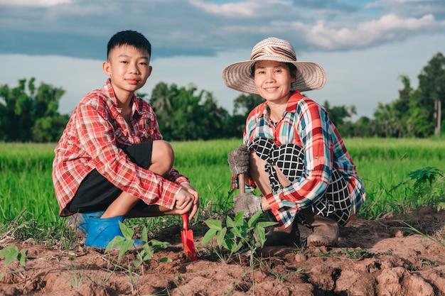 Moeder en kinderen planten de boom op vuil op rijstveld en blauwe hemelachtergrond