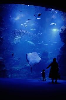 Moeder en zoon in het aquarium