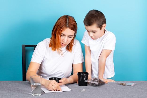Moeder en zoon planten een boom, leggen de geweekte zaden neer om in een pot op een tafel op een blauwe achtergrond te planten. het concept van tuinierlessen met kinderen.