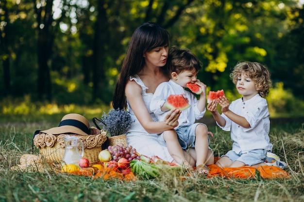 Moeder met haar zonen die picknick in park hebben