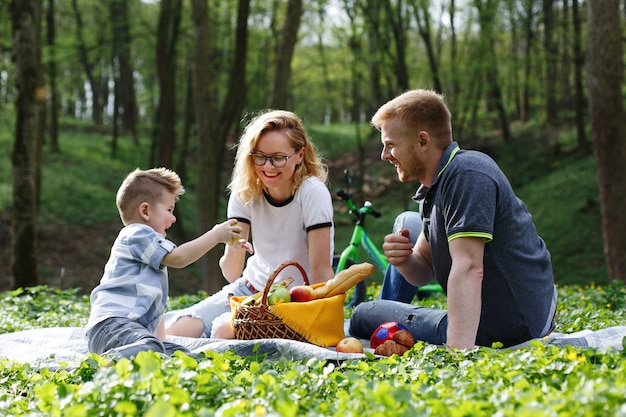 Moeder, vader en een kleine jongen proeven appels zittend op het gras tijdens een picknick in het park