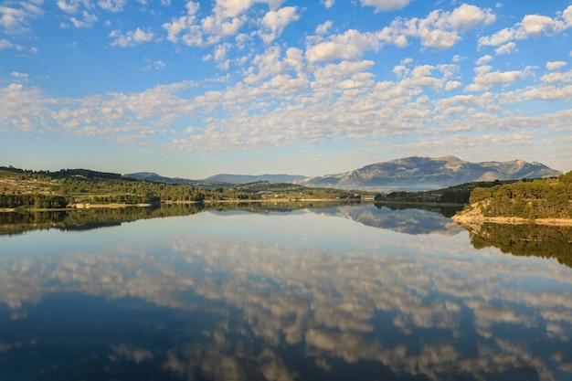 Moeras van beniarres op een dag met witte wolken weerspiegeld in het water.