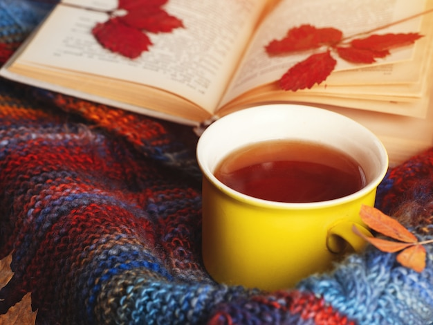 Mok geurige thee in een kleurrijke herfstsjaal op de tafel en een oud vintage boek