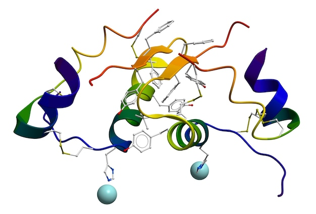 Moleculaire structuur van humane insuline verkregen door een röntgendiffractie-experiment