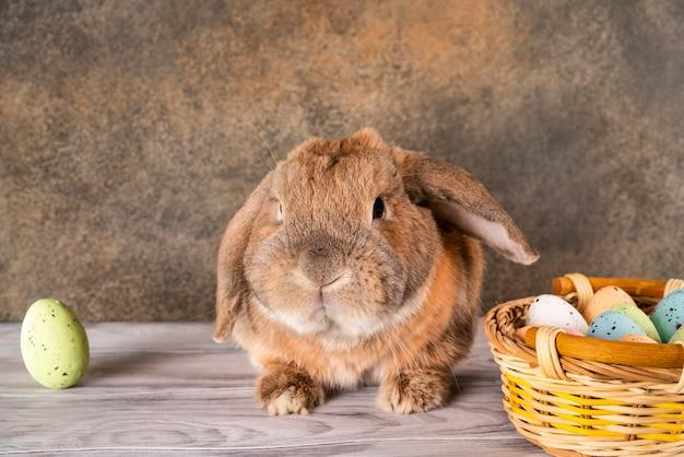 Mollig konijntje van pasen hief zijn oor op. rieten mand met feestelijke paaseieren.