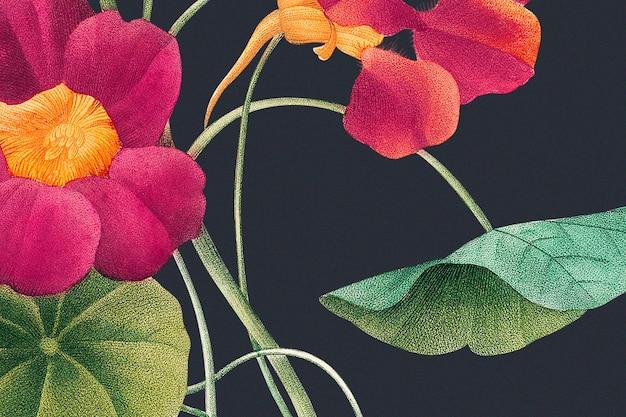 Monk's cress bloem achtergrondillustratie, geremixt van kunstwerken in het publieke domein