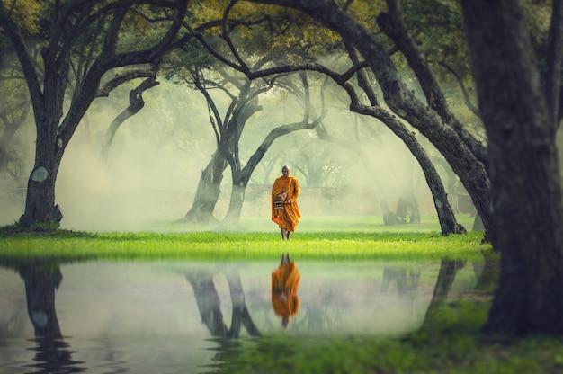 Monnik wandeling in diepe bos reflectie met meer, boeddha religie concept