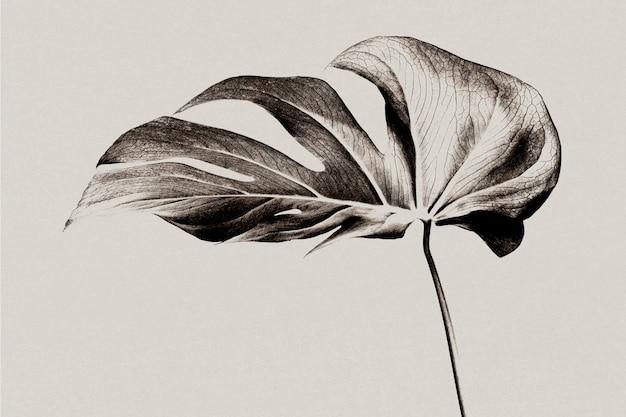 Monstera blad achtergrond grijstinten met risograph effect geremixte media
