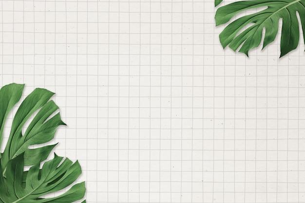 Monstera blad frame op rasterpapier achtergrond